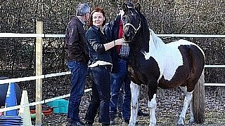 Pferdegestütztes Coaching - Ausbildung